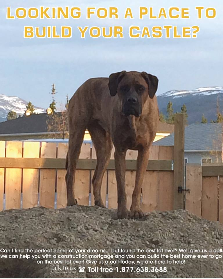 Looking for a place to build your castle?